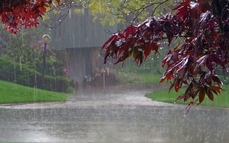 В области объявили метеопредупреждение