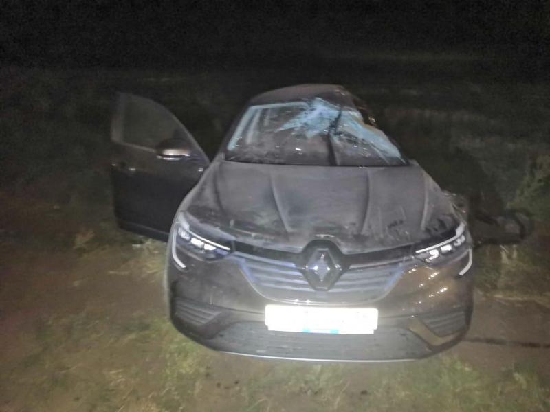 В ДТП в Михайловском районе погиб  водитель, двое пассажиров пострадали
