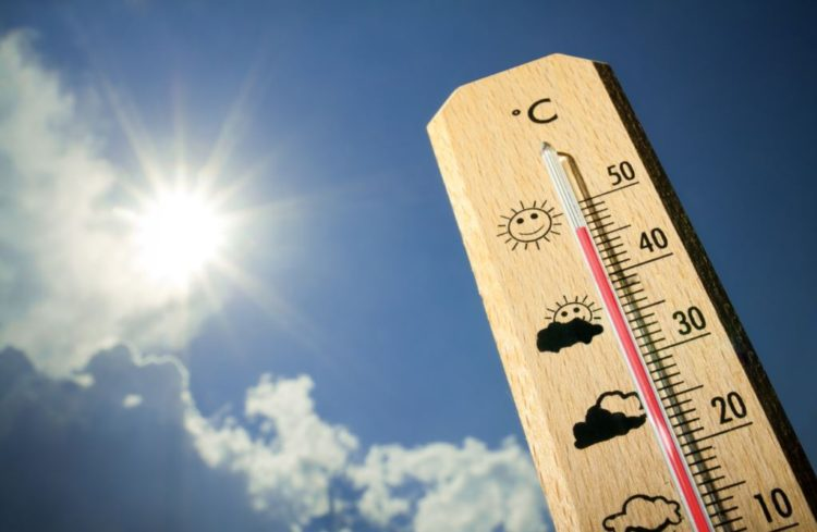 В Рязани потеплеет до 30 градусов