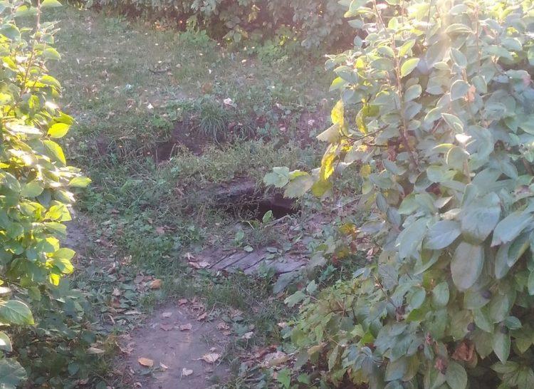 Рязанцы обнаружили на территории Кремля яму с нечистотами