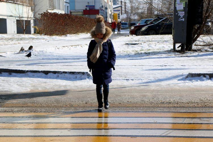 Полицейские предупредили рязанских пешеходах о проверках