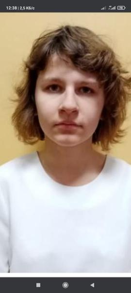 СК возбудил уголовное дело по факту исчезновения двух несовершеннолетних рязанок