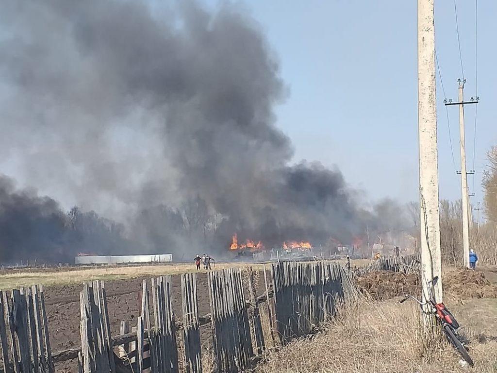 В Сасовском районе сгорели семь домов