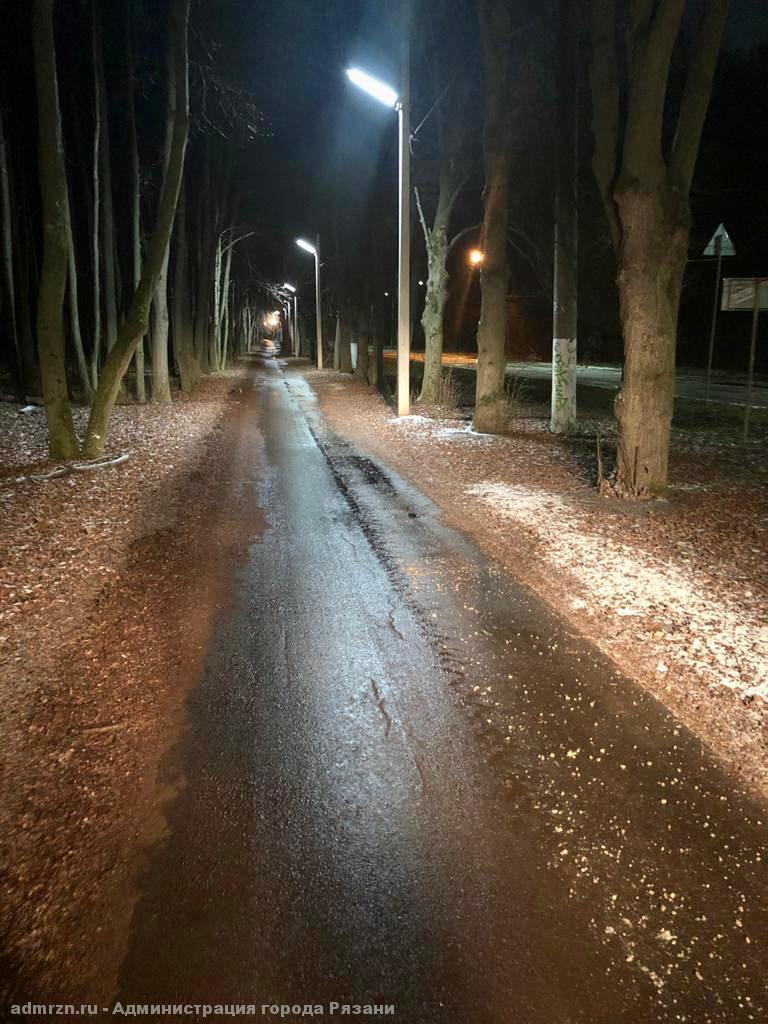 В рязанском Лесопарке обработали пешеходные дорожки