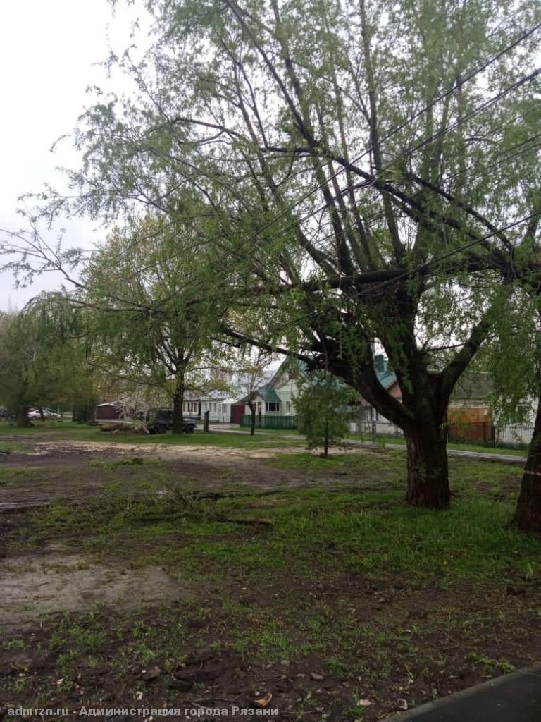 В мэрии Рязани рассказали о последствиях урагана