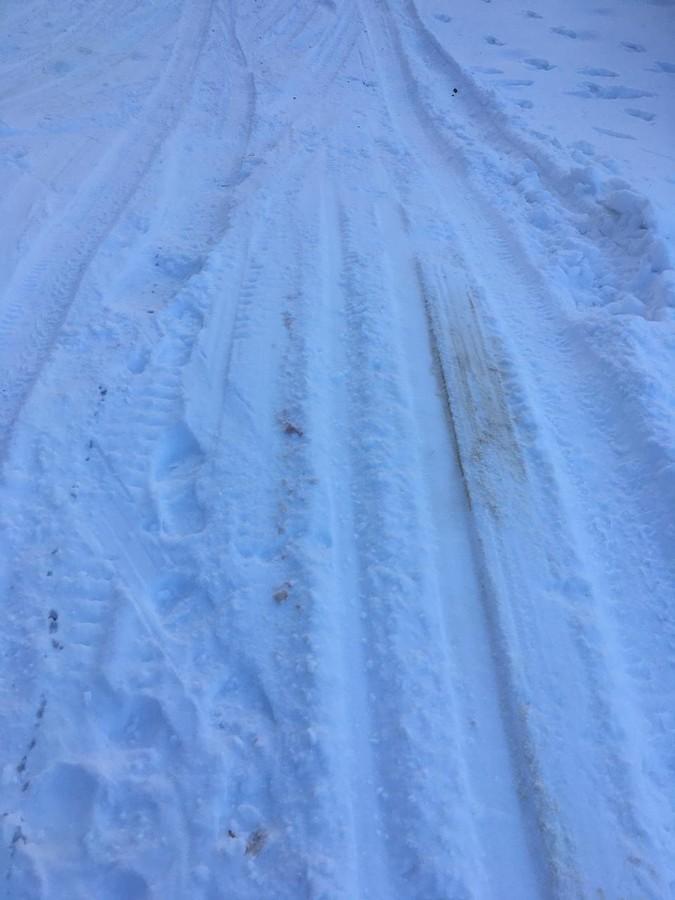 Вандалы испортили лыжную базу в Кадоме