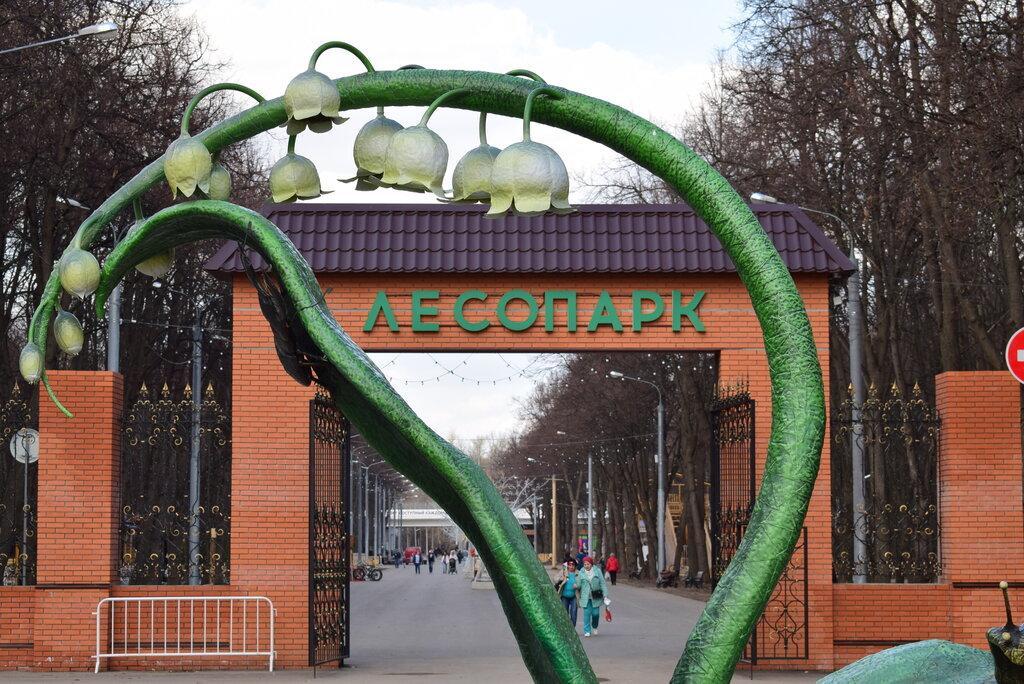 В Рязани временно закрыли на карантин центр уличного спорта «Под мостом»